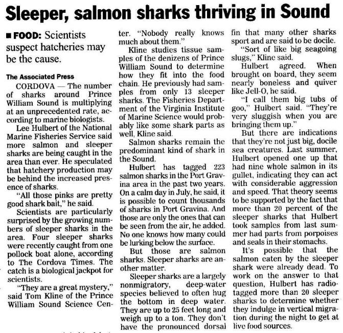 Shark articles on fishing news